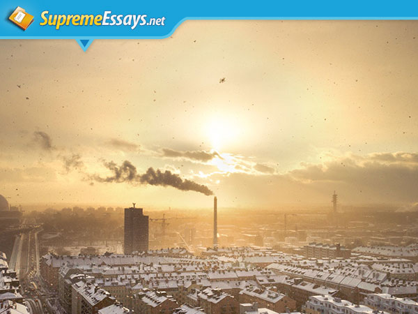 Environmental Pollution Sample Essay